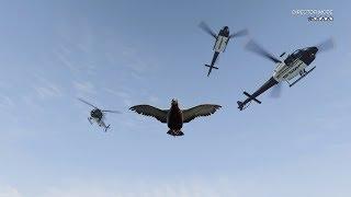 GTA 5 Director Mode funny moments, fails & wins