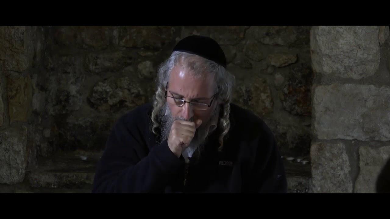 הכל כתוב בתהילים  פורים קטן אצל דוד המלך   יד' אדר א' התשע''ט