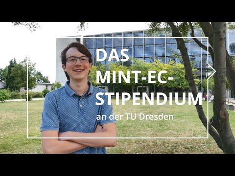 Mint Stipendium