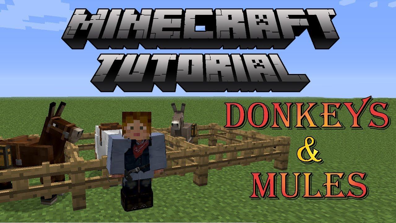 Minecraft Horse Tutorial Donkeys Amp Mules Youtube