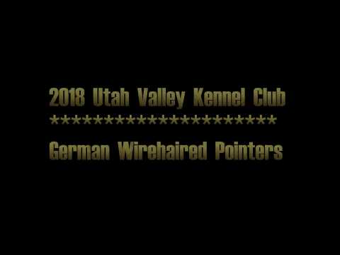 2018 Utah Valley Kennel Club GWPs