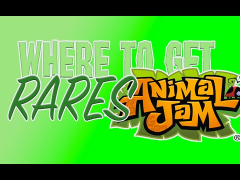 WHERE TO GET RARES ON ANIMAL JAM!