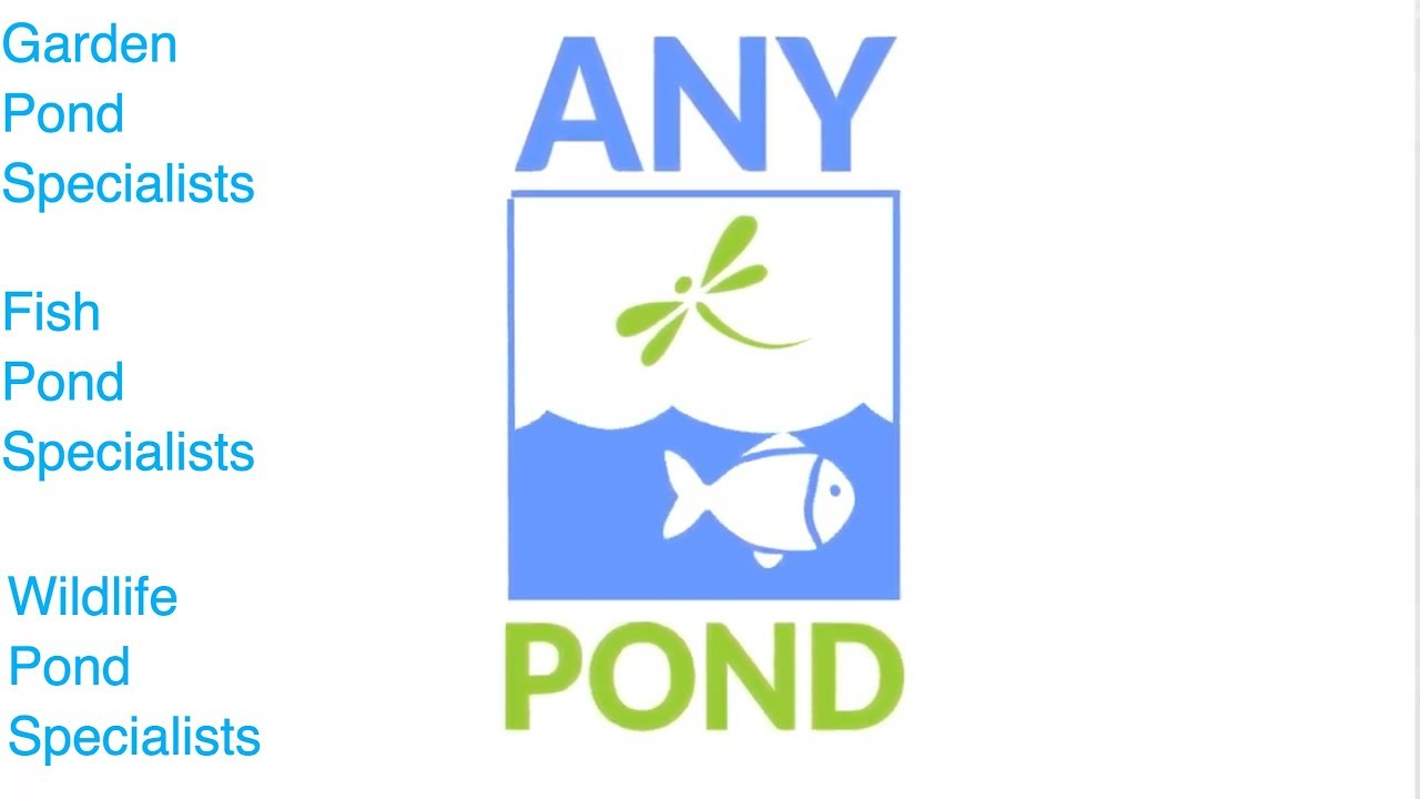 Garden pond specialists any pond limited youtube for Garden pond specialists