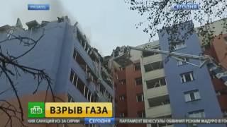Служебные собаки не обнаружили людей под завалами взорвавшегося вРязани дома