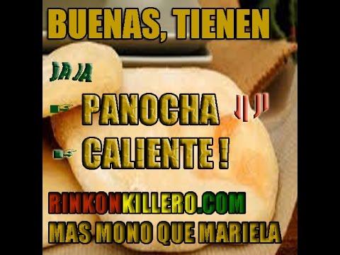 Panochas free