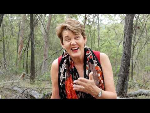 SDEA Theatre Arts Conference 2017 - Dr Julie Dunn: Where Play Meets Drama