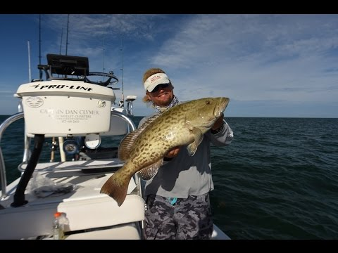 Grouper Fishing With Capt. Dan Clymer In The Spread