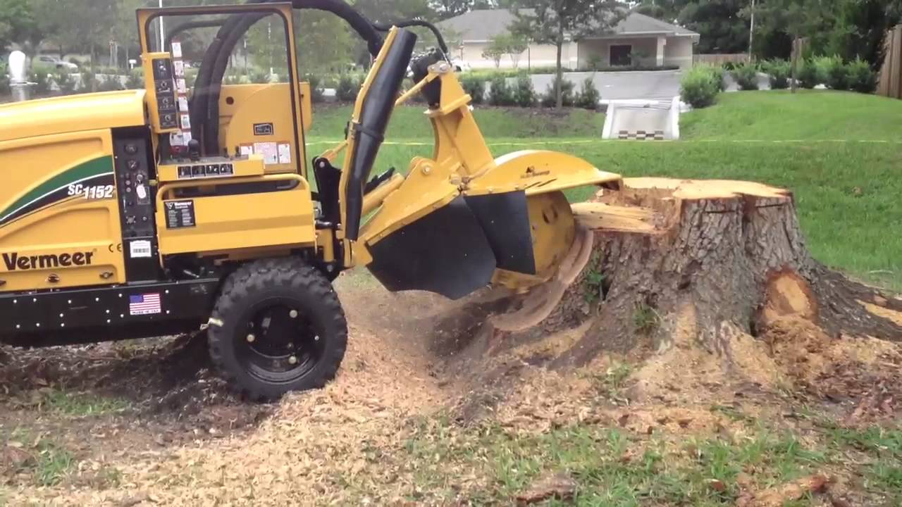 Vermeer Stump Grinder For Sale >> Stumps And Roots Vermeer Sc1152 Youtube