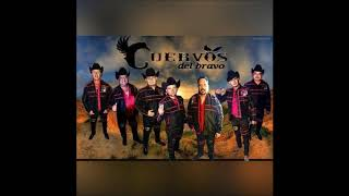 Los Cuervos del Bravo 25 Exitos Rancheros En Vivo