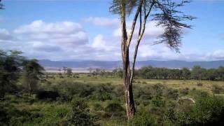Tanzania- Ngorongoro Conservation Area 57