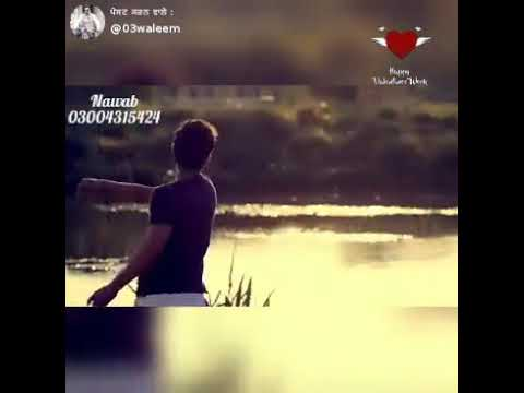 Nikle Tu Bewafa Punjabi Sad Songs Whatsapp Status