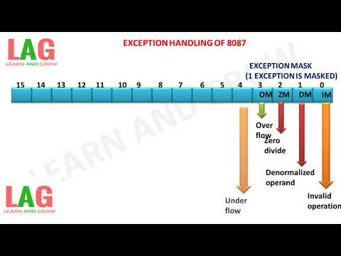 EXCEPTION HANDLING OF 8087 (हिन्दी ) ! LEARN AND GROW