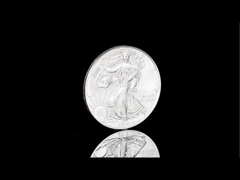 2013 American Silver Eagle | Gainesville Coins