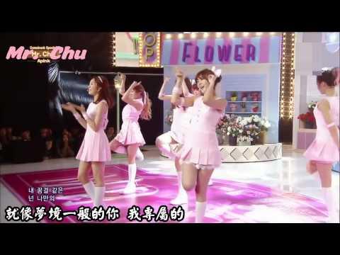 A pink - Mr. Chu 繁中應援