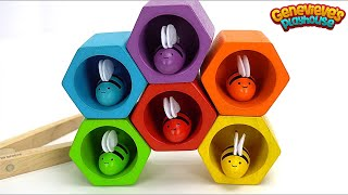 Teach Kids Colors with Fun Toy Bees and Beehive!