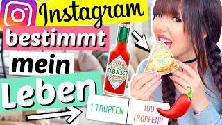Instagram bestimmt 24 STUNDEN über mich!! 😳🙈| ViktoriaSarina