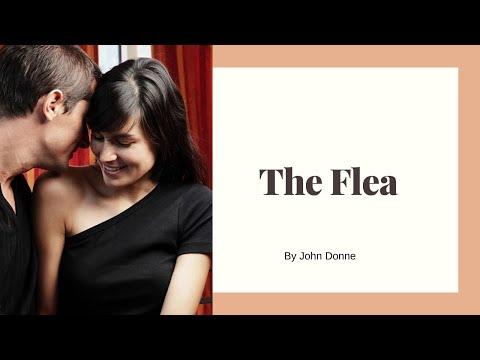 The Flea by John Donne (Or, Seduce Like a Poet!)