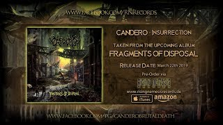 CANDERO - INSURRECTION [SINGLE] (2019) SW EXCLUSIVE