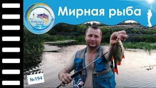 Основы ловли мирной рыбы на спиннинг #194