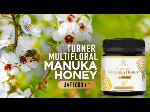 TURNER MUTIFLORAL MANUKA HONEY UAF1000+ - Best Manuka Honey in the World | Manuka Honey Benefits