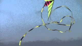 Stunt Kite at Morro Bay Thumbnail