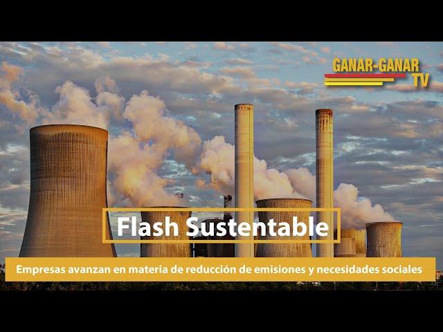 Flash Sustentable: Empresas avanzan en materia de reducción de emisiones y necesidades sociales