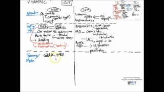 GIT   III  Classification of Diseases Part 1