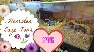Hamster Detolf Cage Tour Spring 2014!