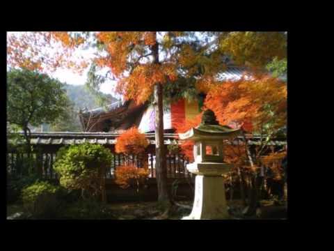 毘沙門堂の散りモミジposted by estragom3