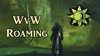 Marksmanship Daze Druid - GW2 WvW Roaming Ranger Build Guide