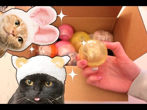 Opening lots of Gashapon [surprise capsule toys] from Japan! (ASMR soft spoken/whisper and crinkles)