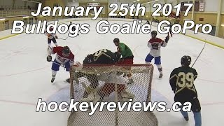 January 25th Bulldogs Hockey Goalie GoPro Beer League Fight & Line Brawl?