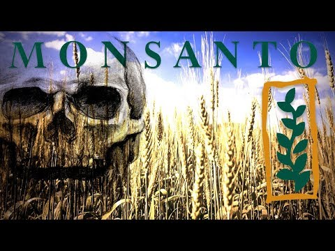 GMO's are made by Monsanto. They also made Agent Orange, Asbestos, PCB's, DDT and others