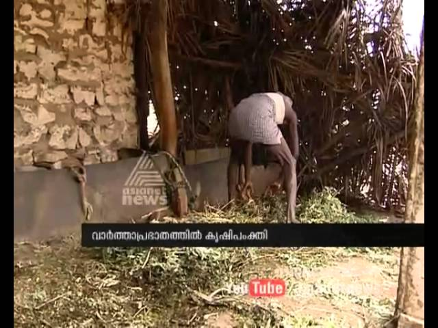 Organic farming | Some basics | making organic fertilizers