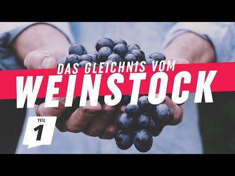 Zeit zum Beginnen | Das Gleichnis vom Weinstock (1) | CZF Gottesdienst