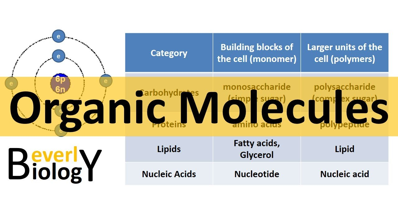 Organic Molecules Organic Chemistry Updated Youtube
