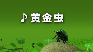 ♪ 黄金虫 (こがねむしは かねもちだ)