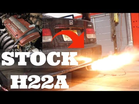STOCK H22A H2B DYNO with yosolo