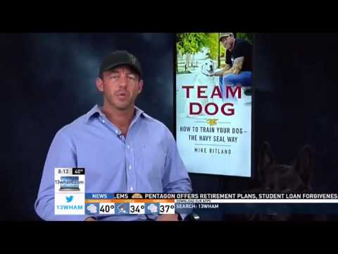 Train Your Dog Like a (Navy) SEAL