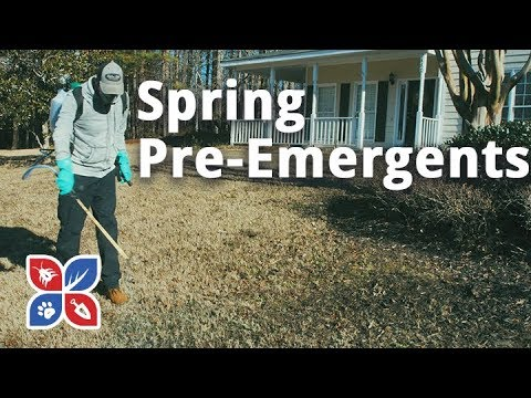 Do My Own Lawn Care - Spring Pre-Emergents - ep.38_
