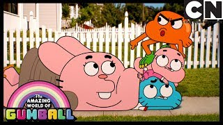 Gumball | Gumball's Stealing Freedom | Cartoon Network