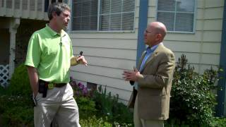 Home Buyer Inspection -- Water And Pests In The Crawl Space
