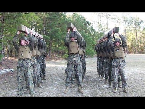 Marines conduct Combat Conditioning PT at Camp Lejeune