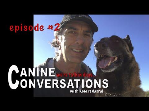Canine Conversations Episode #2 - Talking Dog Training
