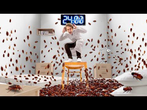24 ЧАСА В КОМНАТЕ С 10 000 ТАРАКАНОВ! - Видео онлайн
