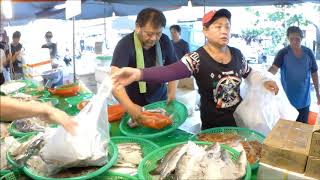 Taiwan-amazing and funny seafood acution - Kezailiao Fishing Port