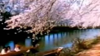 TOKYO pre-war colour film 40S
