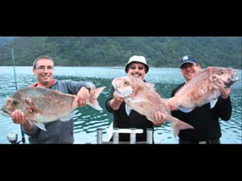 Havelock Pelorus Sounds Fishing In Marlborough