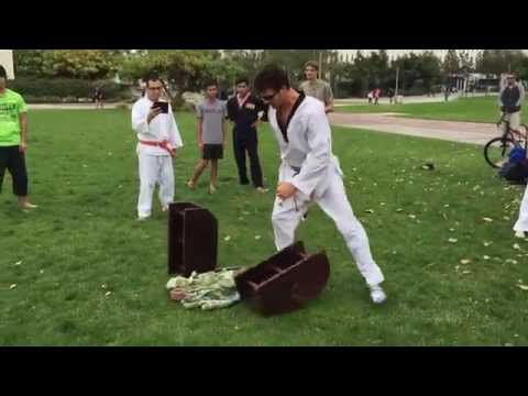 dating taekwondo