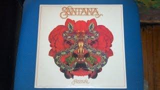 フェスティバル Festival 25AP 333 Santana サンタナ.